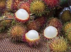 Rambutan fruit Sri Lanka